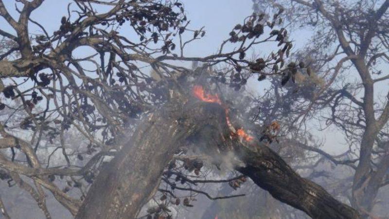 Çanakkale'de Ot Yangını Binaya Sıçradı