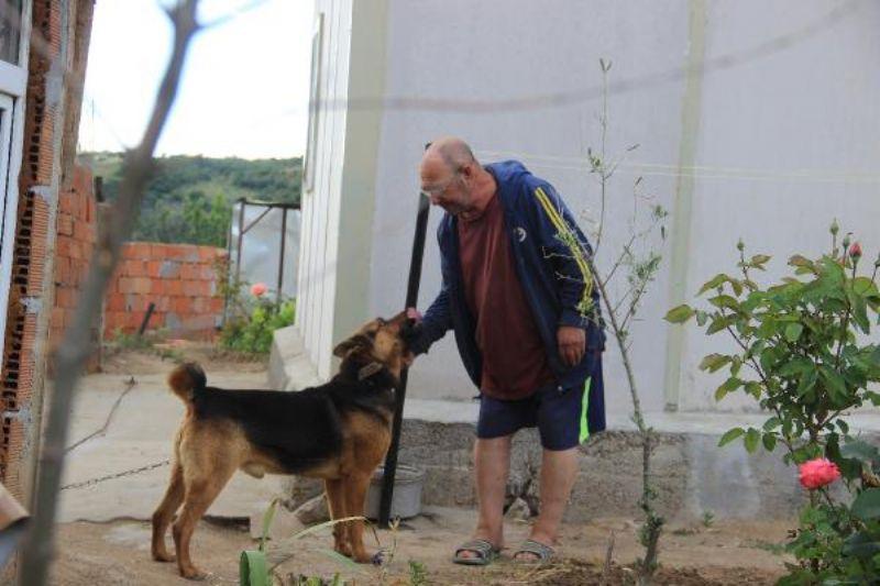 Kurt Köpeği, Eve Girmeye Çalışan 2 Metrelik Yılanı Parçaladı