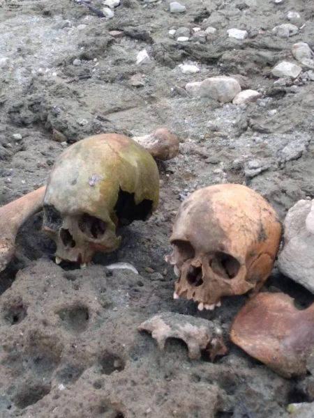 Biga'da Gölet Havzasında 4 Kafatası ve Kemikler Bulundu