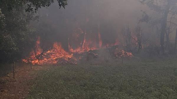 Çanakkale'de Orman Yangınında 3 Hektar Ormanlık Alan Zarar Gördü