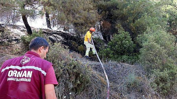 Eceabat'ta Korkutan Orman Yangını