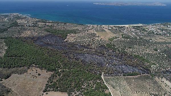 Ezine'de Yanan Ormanlık Alan Havadan Görüntülendi
