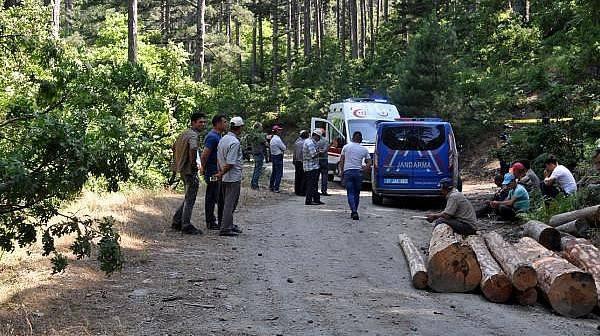 Devrilen Traktörün Altında Kalan Orman İşçisi Öldü