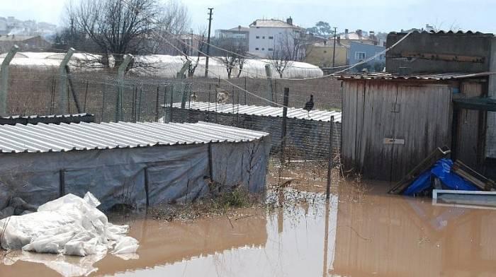 Bayramiç'te Şiddetli Yağış Hayatı Felç Etti