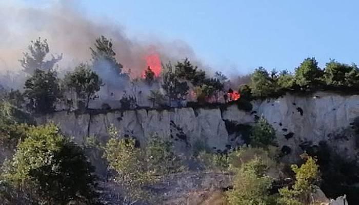 Biga'da Orman Yangını Çıktı