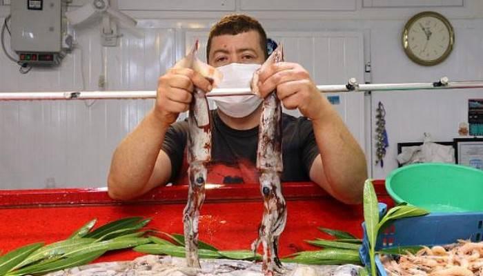 Saros'ta Kalamar Avı Bollaştı, Fiyatı 60 Liraya Düştü