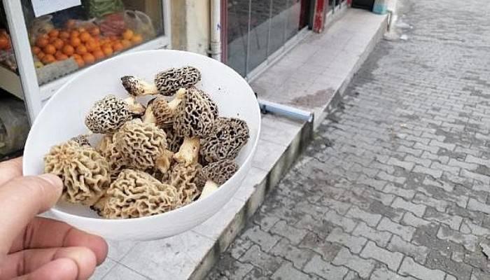 Kilosu 130 Lira Olan Kuzugöbeği, Tezgahta Yarım Saatte Tükeniyor