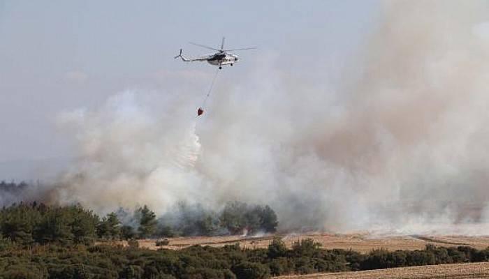 Gelibolu'da Orman Yangını Kontrol Altına Alındı