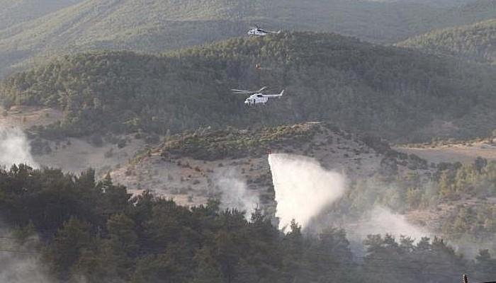 Bayramiç'teki Orman Yangını Kontrol Altına Alındı