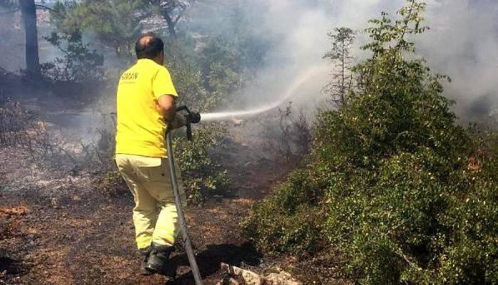 Yıldırımın İsabet Ettiği Ormanda Yangın