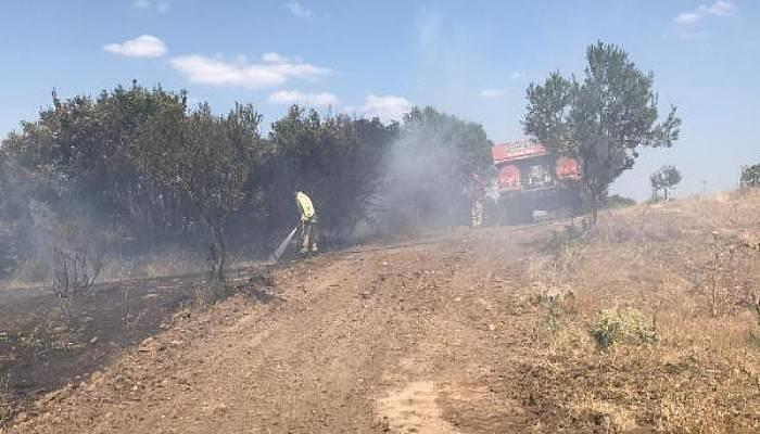 Ezine'deki Yangın Kontrol Altına Alındı