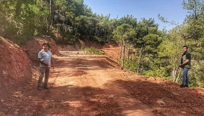 Yeni Orman Yolları Yapılıyor