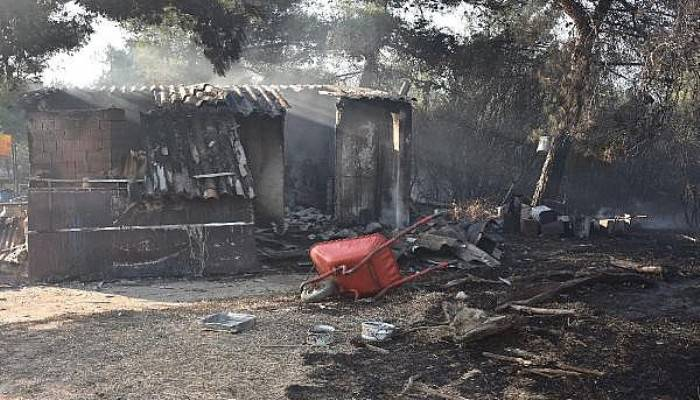 Gelibolu'daki Orman Yangını 15,5 Saat Sonra Kontrol Altında