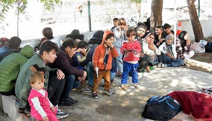 Ayvacık'ta 190 Kaçak Göçmen Yakalandı