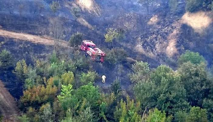 Biga'daki Orman Yangını Kontrol Altına Alındı