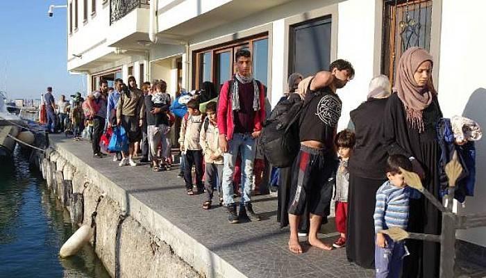 Ayvacık'ta 41 Kaçak Göçmen Yakalandı