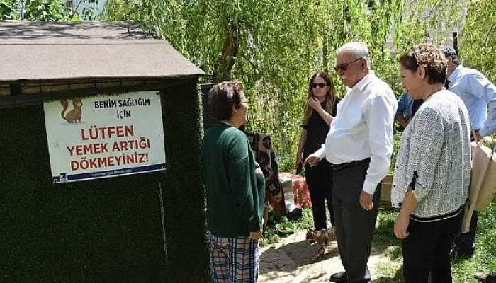 Başkan Gökhan, Hayvan Barınağı ve Kedi Köyünde İncelemelerde Bulundu