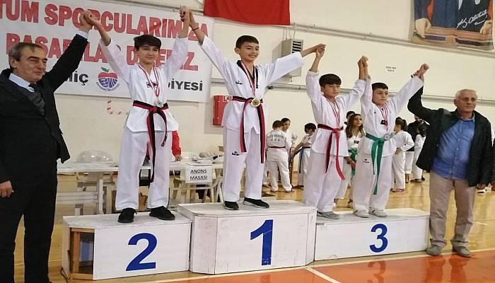Bayramiç'te Cumhuriyet Kupası Taekwondo Şampiyonası
