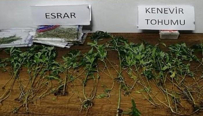 Uyuşturucu Operasyonlarına 2 Tutuklama