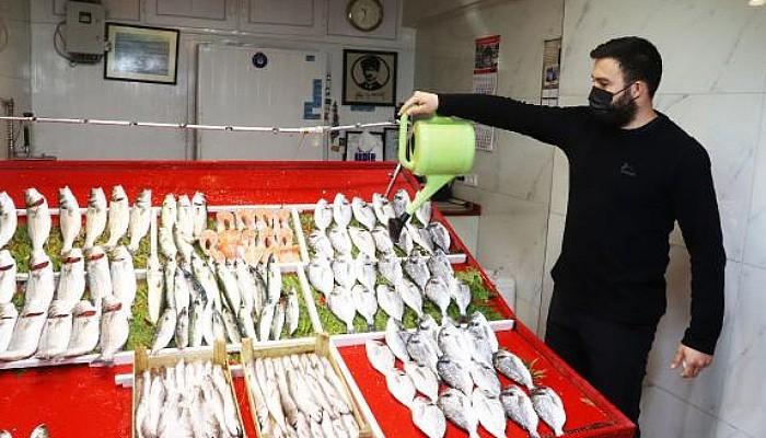 Çanakkaleli Balıkçılar Açılamadı, Tezgahta Çeşitlilik Azaldı
