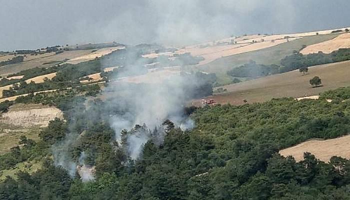 Lapseki'de Yangında 5 Dönüm Ormanlık Alan Zarar Gördü