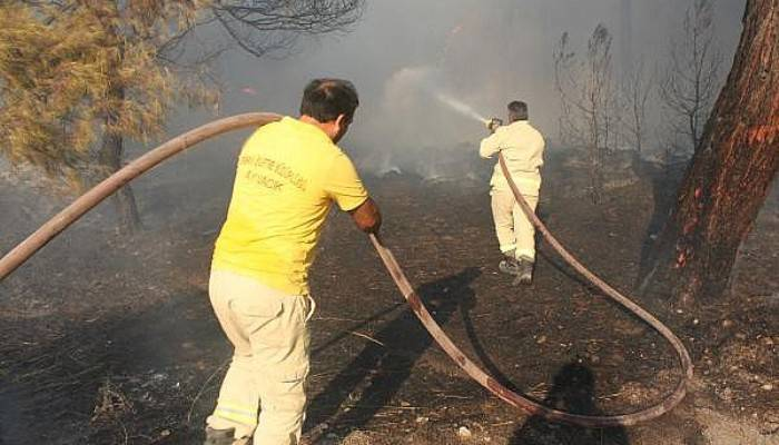 Ezine'deki Orman Yangını Kontrol Altına Alındı