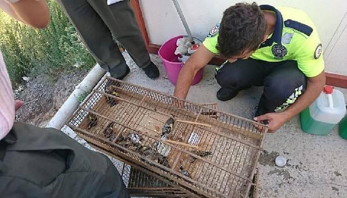 Koruma Altındaki Kuşları Yakalayana 132 Bin 416 TL Ceza
