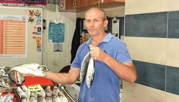 Balıkçılar ve Vatandaşlar Av Yasağının Bitmesini Bekliyor