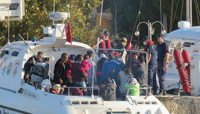 Ayvacık'ta 206 Kaçak Göçmen Yakalandı