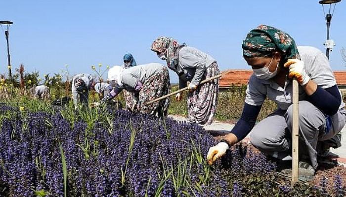 Tam kapanmanın İlk Gününde Kadın İşçiler, Çapa Yapıp, Otları Temizledi