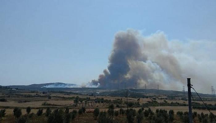 Gelibolu'da Orman Yangını