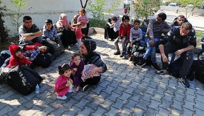 Ayvacık'ta 118 Kaçak Göçmen Yakalandı