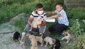 Bayramiç'te 2 Çocuk, Sokak Köpeği ve 12 Yavrusuna Sahip Çıktı