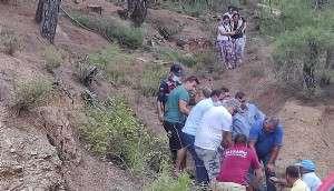 Orman İşçisi, Kestiği Ağacın Altında Kalarak Öldü