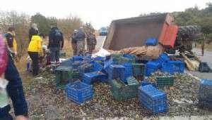 Zeytin İşçilerinin Traktörü Devrildi: 5 Yaralı