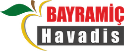 Bayramiç Havadis